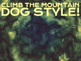Summer Camp 2015: Climb the Mountain - Dog Style (III)