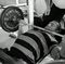 Weak-Point-Training (IV): Schr�gbankdr�cken