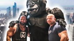 Massetour durch New York mit Steve, Enrico & Stefan