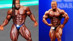 Kai Greene vs Ronny Rockel | Stefans Analyse